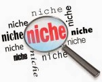 develop your niche