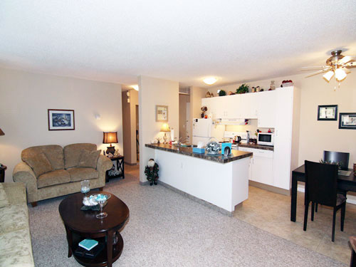 photo of kitchen and living room in Willow Estates